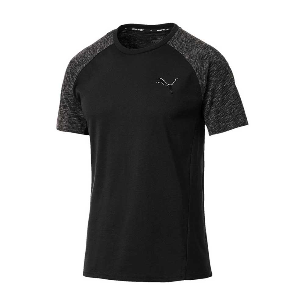 Evostripe T-Shirt M