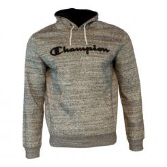 Hooded Sweatshirt Big Logo