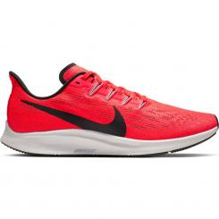Air Zoom Pegasus 36