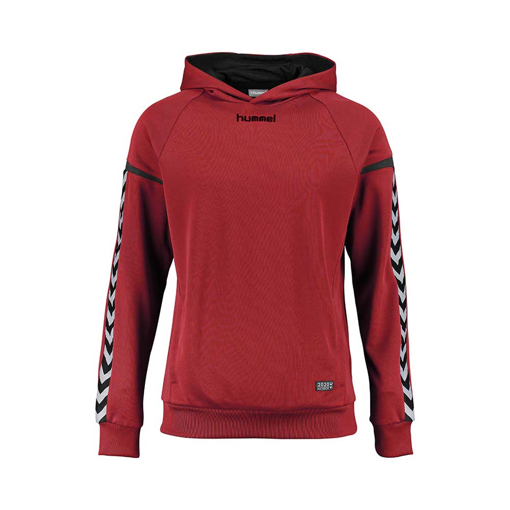 ddf26a210e2a Teamsport Philipp   Hummel Authentic Charge Poly Hoodie Herren ...
