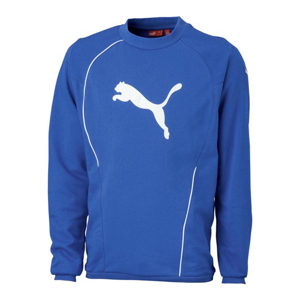 fcd304d6ce107b Puma Xl Teamsport Foundation 651656 Sweatshirt Herren Philipp RXpprwq5